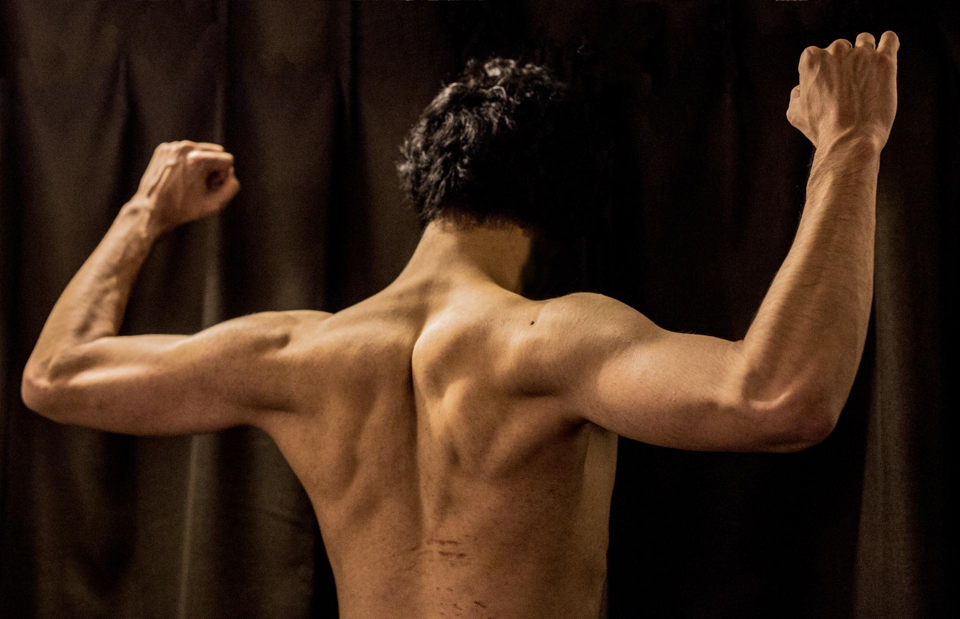 の 筋肉 腕 上腕筋が見てわかる!筋肉図解8選